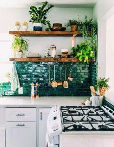 観葉植物できれいに彩ったキッチン
